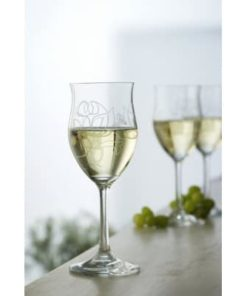 Tulipan Glas og Spiegelau Champagneglas