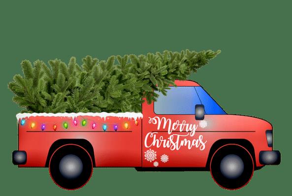 Fri levering af juletræer